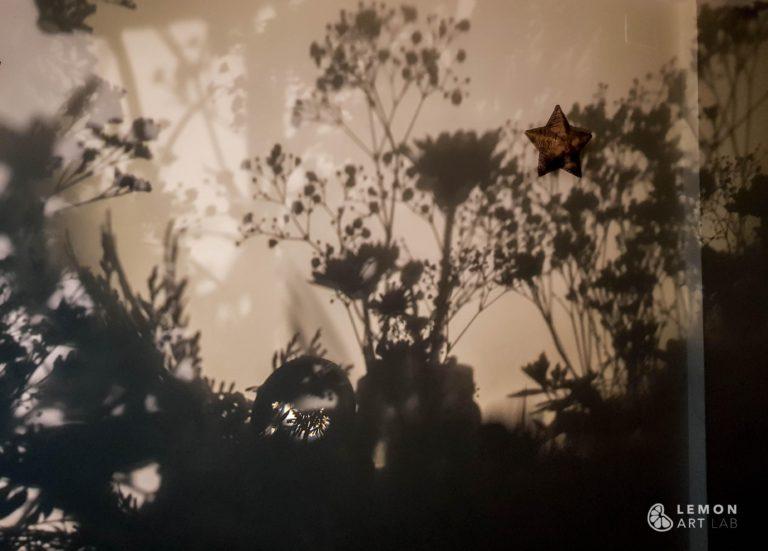 Composición de flores y luces