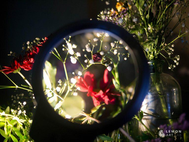 Flores bajo una lupa