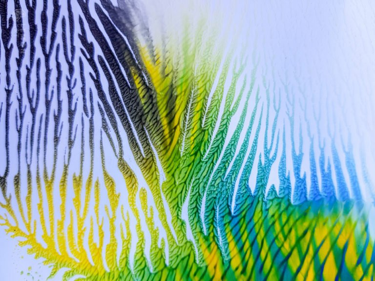 Formas naturales con colores brillantes