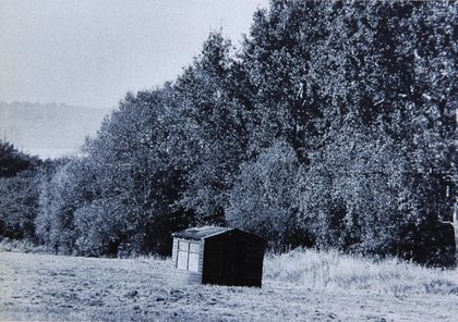 Cabaña de Corlenia Parker