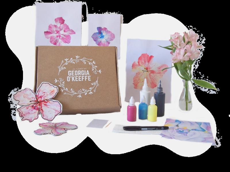 Kit de arte de creatividad botánica